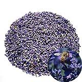 TooGet Naturales Flores de Lavanda Secas Grado Adicional Flor Azul Ultra Lavanda Vacío-Packed - 225g