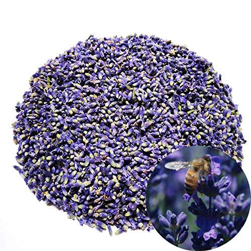 TooGet Fleurs de Lavande Séchées Biologiques Extra Grade Bleu Ultra Lavande Bourgeons sous Vide - 225g