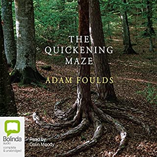 The Quickening Maze cover art