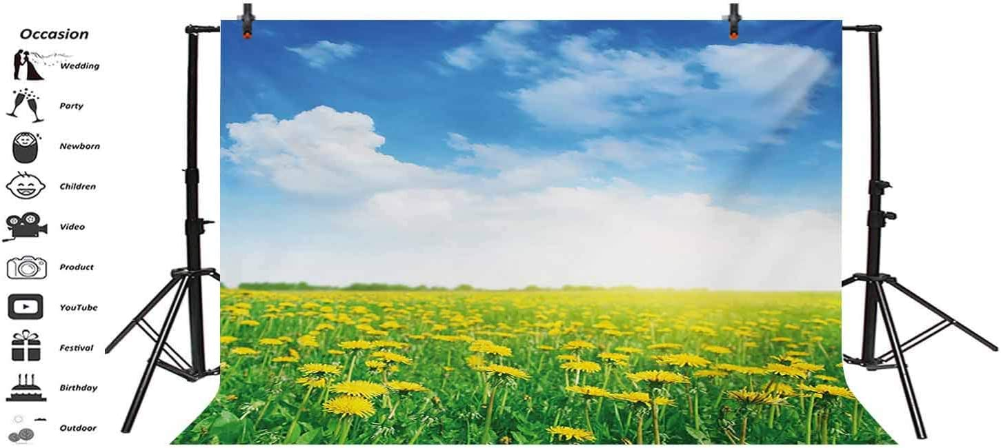 Yellow and Blue 15x10 FT Vinyl Backdrop PhotographersSummer Daisy Flower Field Environment Refreshing Grassland Growth Background for Party Home Decor Outdoorsy Theme Shoot Props