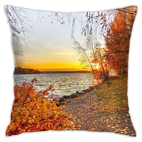 Hangdachang Throw Pillow Case 45cm x 45cm Birch Trees Pillowcase,Square Throw Covers,Decorative Cushion for Sofa Couch Car