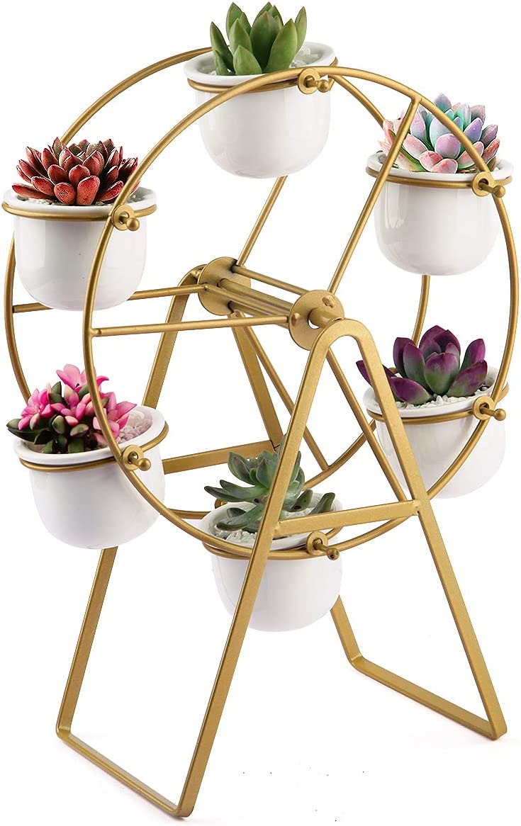 Metal Plant Stand with 6 shop Pots Decorati San Diego Mall Succulent Planter Modern