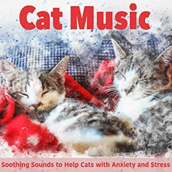 Cat Music: Soothing Sounds to Help Cats with Anxiety and Stress