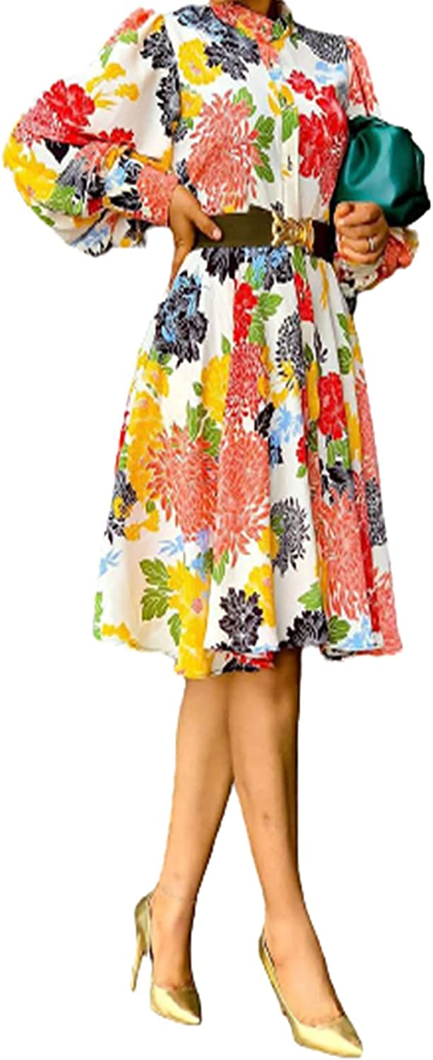 LUXMAX Beautiful Women's Cool Summer Dress - Pullover Long Sleeve Print Slim Dress, Casual and Comfortable Dress, Fashionable and Simple Summer Dress(Size:X-Large,Color:A) (Color : A, Size : M)