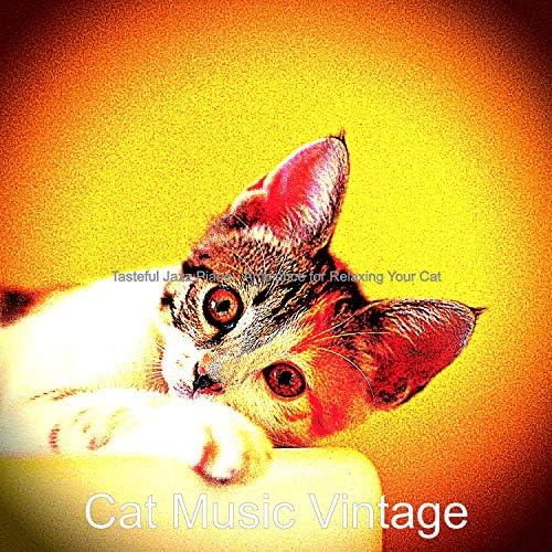 Cat Music Vintage