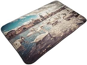 Jingclor Welcome Doormat 19.5''Wx31.5''L, Non-Slip Indoor Outdoor Door Mats, Easy Clean Rug Mats for Entry, Printing Doormats with Prague Swan - 49x80cm