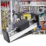 DSENIW QIDOFAN Riel de guía Lineal Guía lineares del Carril de 100 mm, aleación de Aluminio de la Diapositiva de husillo roscado Tabla Propuesta de Automatización Industrial (1605)