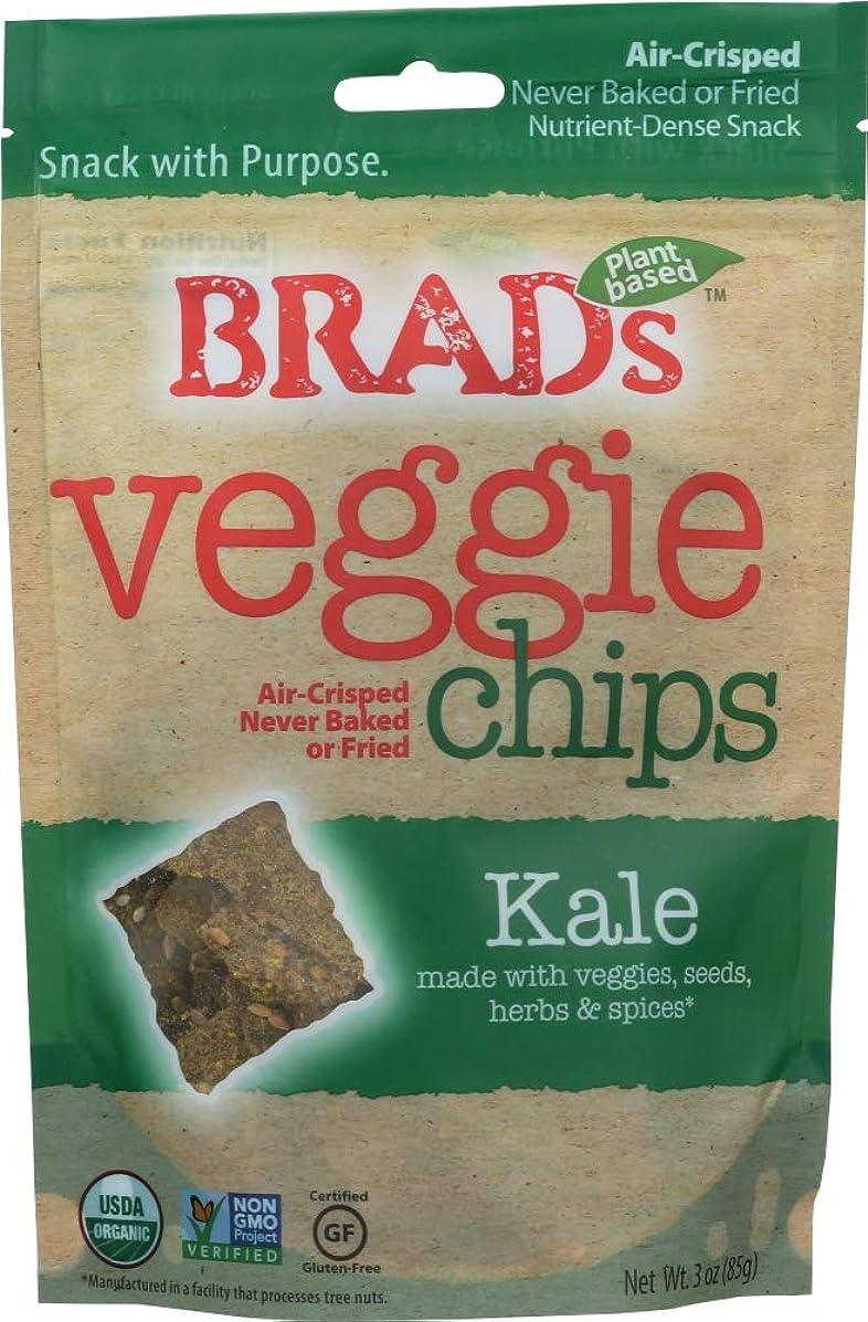 Brad's Plant Based (NOT A CASE) Vegan Chips Kale