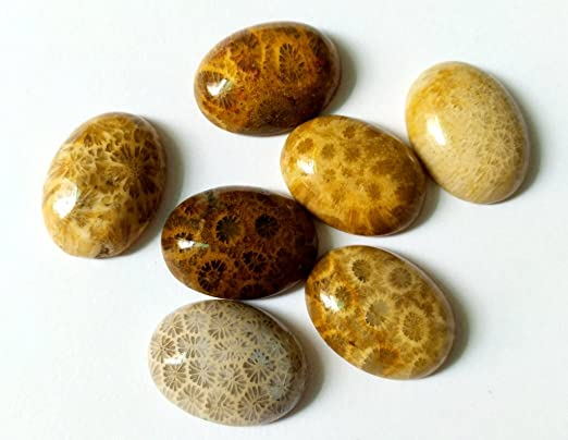 A+++ Top Quality Peacock jasper  Gemstone  Good Quality  Cabochons loose stone for jewelry stone 57 Ct{ 38 X 38  } mm # 2241