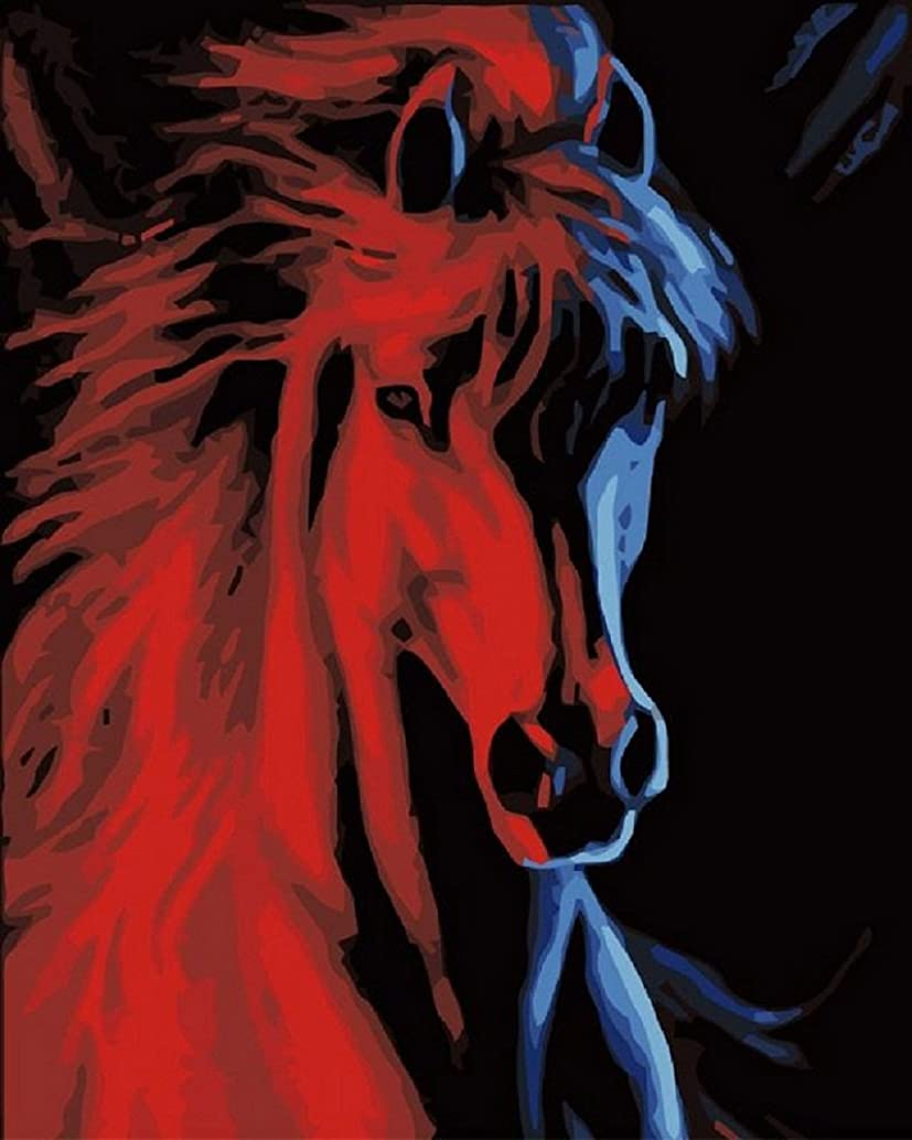 Colour Talk Diy oil painting, paint by number kit - Fire and ice horse 1620 inch.
