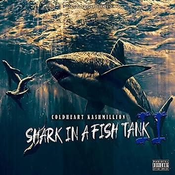 Shark in a Fish Tank 2