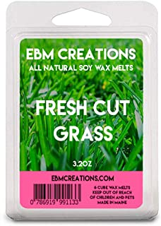 Fresh Cut Grass - Scented All Natural Soy Wax Melts - 6 Cube Clamshell 3.2oz Highly Scented!