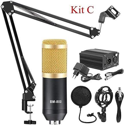 NanYin BM 800 Studio Microfono per Microfono da Karaoke Computer, Kit Microfono Professionale a condensatore con Asta microfonica Studio Mikrofon (Color : Gold Kits C) - Trova i prezzi più bassi