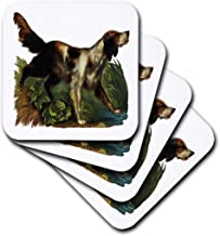 3dRose CST_170701_2 Brown and White Spaniel Hunting Dog in The Grass Along The Water Soft Coasters, Set of 8