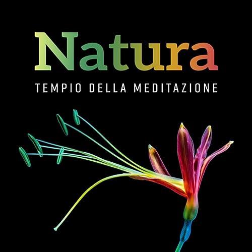 Natura (Tempio della meditazione - Equilibrio interiore ...