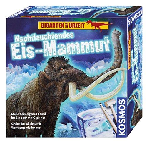 Kosmos 630478 - Nachtleuchtendes Eis-Mammut