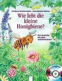 Wie lebt die kleine Honigbiene?: Eine Geschichte mit vielen Sachinformationen