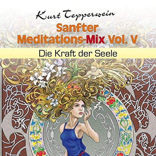 Die Kraft der Seele (Sanfter Meditations-Mix Vol. V) Titelbild