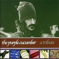 Purple Cucumber