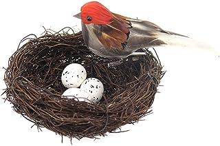 Amosfun 5 Piezas Plumas pájaros pájaros Artificiales nidos de Huevos DIY Manualidades Ornamento para jardín al Aire Libre Navidad Fiesta de Pascua decoración Naranja
