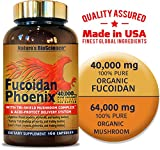 FUCOIDAN Phoenix by Nature's BioScience : 40,000 mg of Pure Fucoidan + 64,000 mg of Pure Mushroom