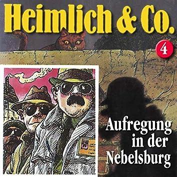 Folge 4: Aufregung in der Nebelsburg