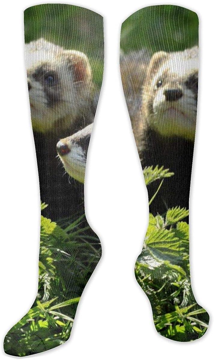 Wildlife Animal Ferret Knee High Socks Leg Warmer Dresses Long Boot Stockings For Womens Cosplay Daily Wear