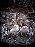 'WASO Juego de 4Hobby–Imágenes scrapy arañazos–Wild de Animales–Ciervo/Jabalí/Corzo/Wolf/Plata Tarjeta Postal
