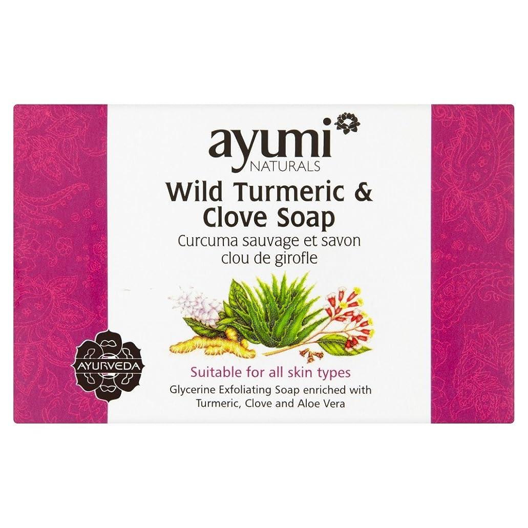 過度の流出習慣Ayumi Turmeric & Clove Soap?100g