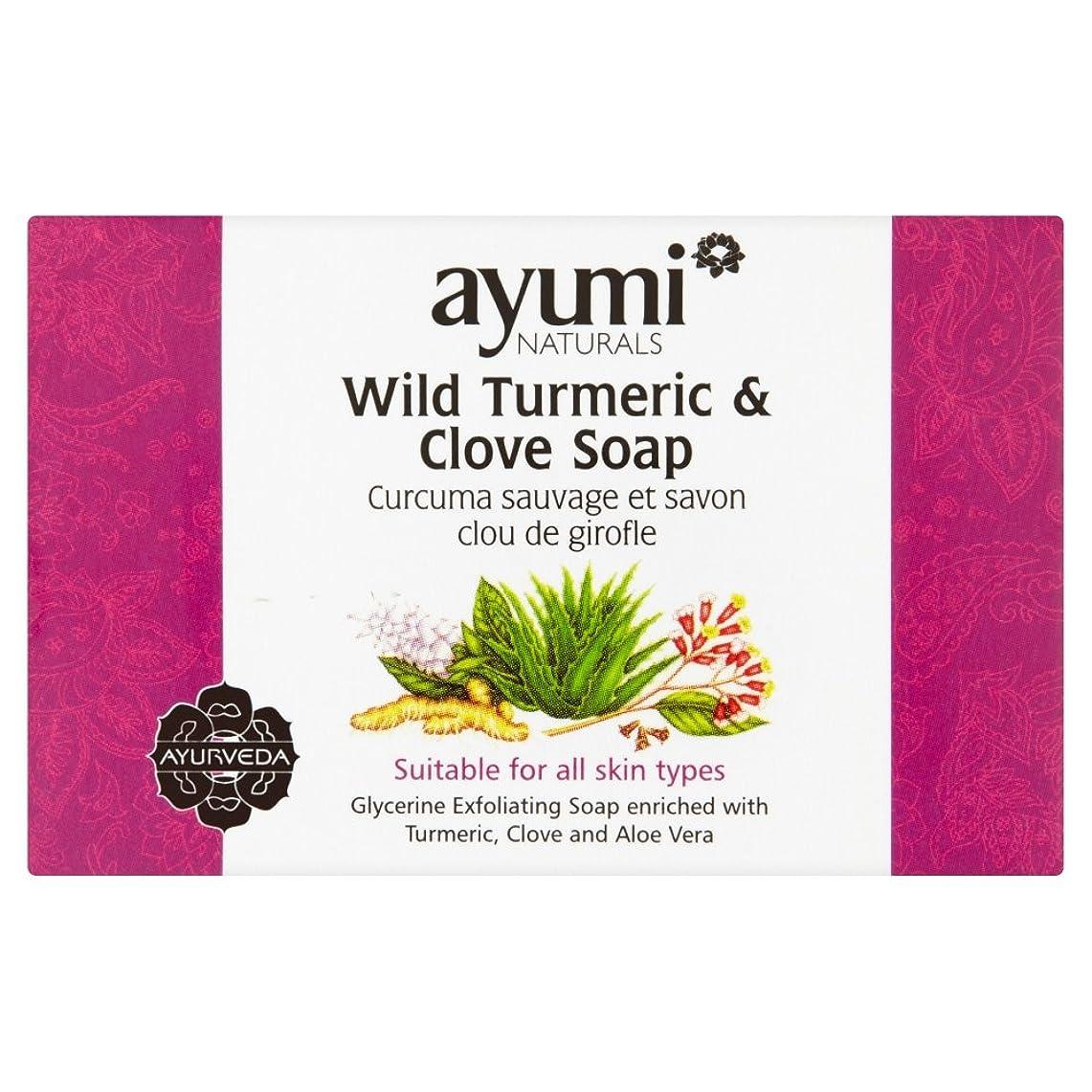 委任する知性抵抗するAyumi Turmeric & Clove Soap?100g