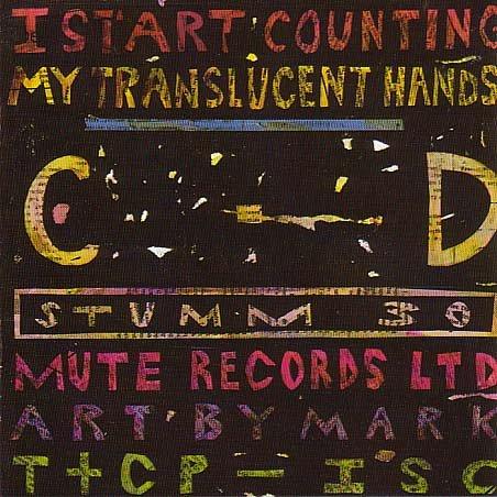 My Translucent Hands