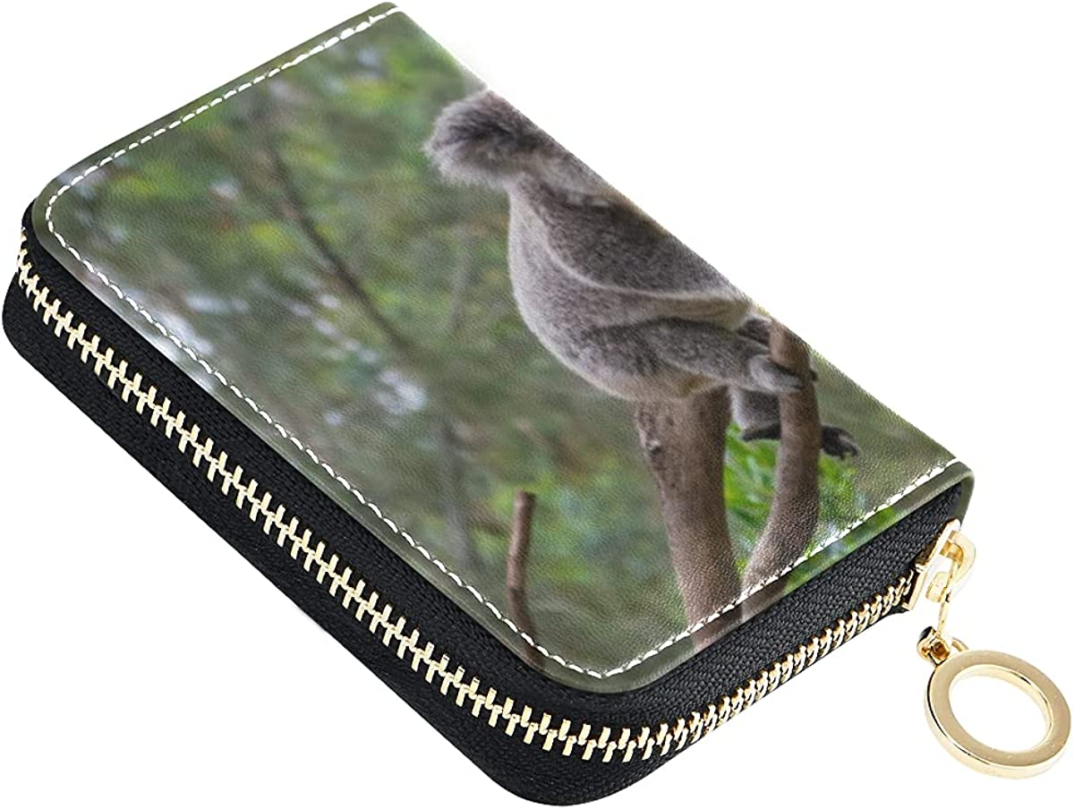Credit Selling rankings Card Wallet Ranking TOP8 for Women Koalas Leather Tree Cases Cards On
