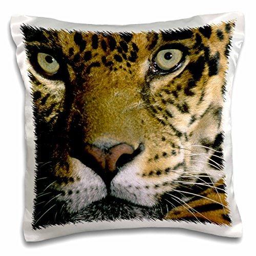 Jaguars - Jaguar Face, Amazon Basin, Peru 16x16 inch Pillow Case