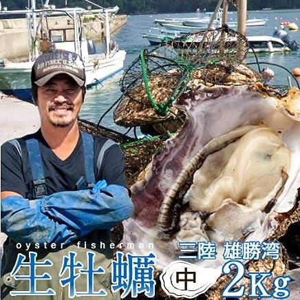 生牡蠣 殻付き 2kg 中 生食用 宮城県産 漁師直送 格安生牡蠣お取り寄せ