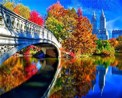 Jiedoud Rompecabezas De Madera para Adultos, 1000 Piezas, Kit De Bricolaje De Central Park De Nueva York, Juguete, Decoración para El Hogar