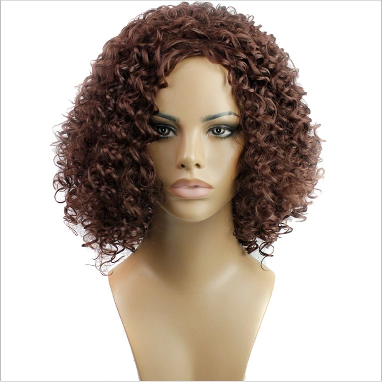 単にビーム平野JIANFU 女性のための15inch合成高温ウィッグロングバンズの短いカーリーウィッグヘアナチュラルカラーウィッグ耐熱性210g(ワインレッド、ブラック) (Color : Wine red)