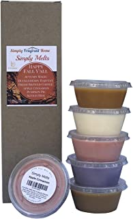 Scented Wax Melts Variety Pack - Hand Poured Natural Soy Candle Wax Melts for Warmers, 6 Resealable Cups (2.2 oz Each, 13.2 oz Total), Up to 40 Hours of Scent Throw Per Quarter Cup (Happy Fall Y'all)
