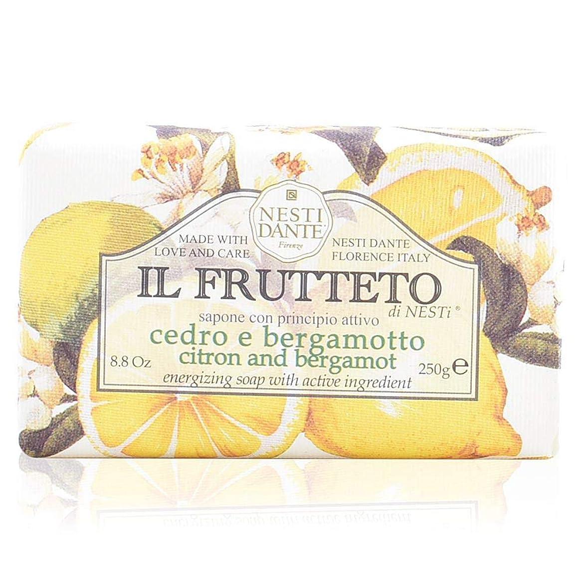 好色なフェミニン説明的ネスティダンテ イル フルッテート ソープ レモン&ベルガモット 250g