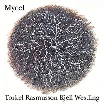 Mycel