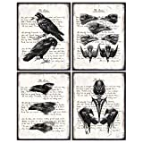 The Raven Edgar Allan Poe - Gothic Home Decor - Rustic Vintage Crow Home Decoration for Living Room, Office, Bedroom - Cool Unique Gift - Creepy Hipster Goth, Wicca, Wiccan, Occult Poster Print Set
