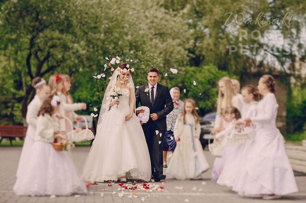 une f/ête romantique ou un /év/énement 1000 Count blanc ivoire pour une demande en mariage WAKISAKI P/étales de rose artificielles d/ésodoris/ées pr/êtes /à lemploi