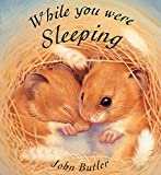 While You Were Sleeping (Orchard Picturebooks)