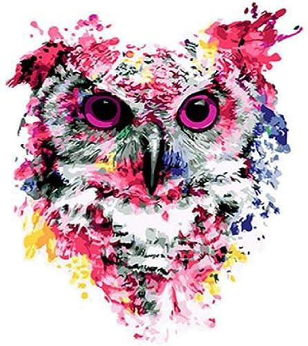 Jjyyh Peintures par Numéros Chouette Abstraite 80X100Cm Bricolage Peinture à l'huile Linen Toile pour Adultes Les Enfants Débutants des Gamins' Jouet Numéros Peinture par Décoration Murale