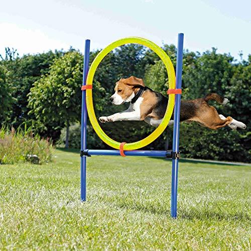 Pet Prime Pet Dogs Juegos al Aire Libre Agilidad Ejercicio Equipo de Entrenamiento Agility Starter Kit Jump Hoop Hurdle Bar