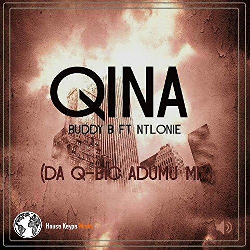 Qina (feat. Ntlonie) (Da Q-Bic Remix)
