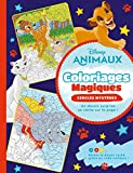 DISNEY - Coloriages Magiques - Cercles mystères - Animaux
