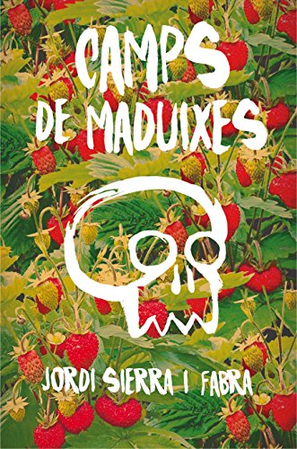 Camps de maduixes: 178 (Gran Angular)