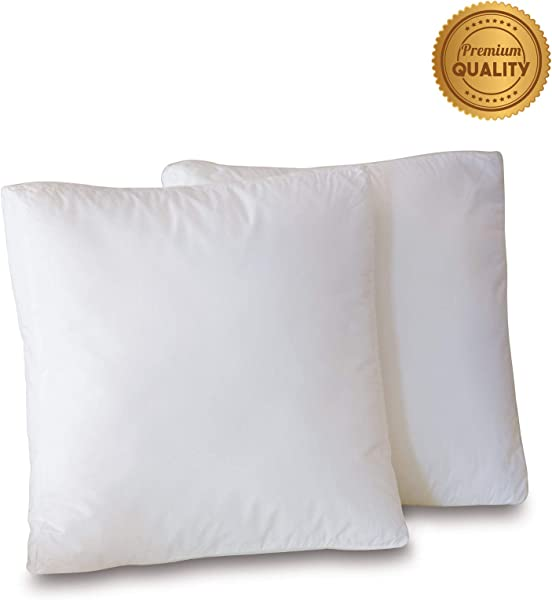 Plankroad Home D Cor 17x17x3 Hypoallergenic Luxury 100 Small Feather Boxed Square Pillow Insert 100 Cambric Cotton Shell Never Vacuum Packed Odorless Made In USA Set Of 2