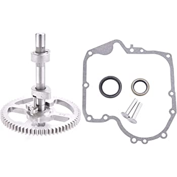 Wadoy 793880 Camshaft Kit Replacement for 215000 Model Briggs and Stratton Engine Replace 793583 792681 791942 795102