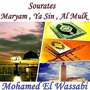 Sourates Maryam , Ya Sin , Al Mulk (Quran)